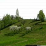 Весна на Буньковій горі